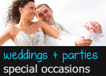 DJ Weddings, Parties, Special Occasions